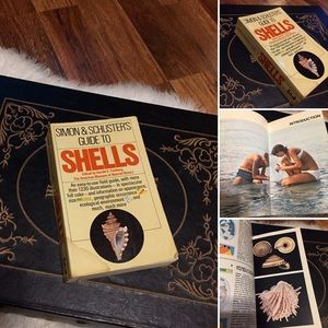 Vintage Accents - 🦋2/$10 3/$15 4/$18 5/$20 Vintage Shell 🐚 Book